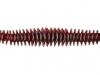 redbug-550x239